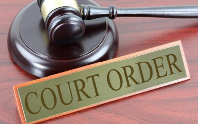 What are Temporary Court Orders?